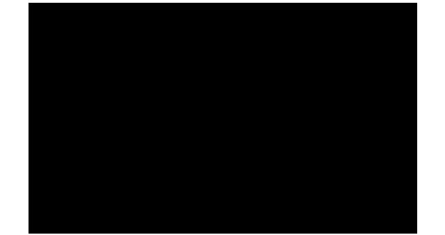 Png Festival De Berlin Logo