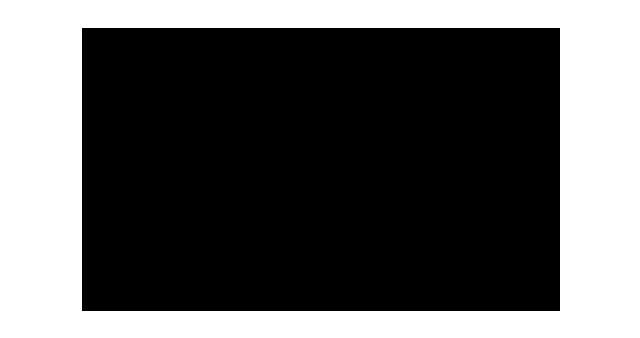 Png Festival De Venise Logo